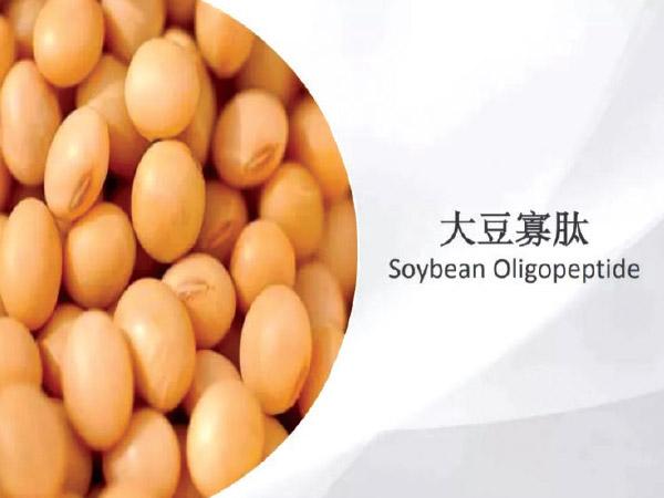 Soybean Oligopeptides